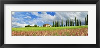 Landscape with cypress alley and sainfoins, San Quirico d'Orcia, Tuscany Fine-Art Print