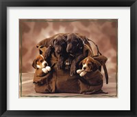 Puppies Fine-Art Print