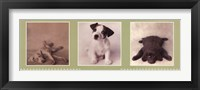 Low Down Doggie Blues Fine-Art Print