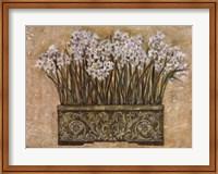 White Narcissus Fine-Art Print
