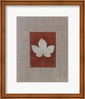 Silver Leaf III Fine-Art Print