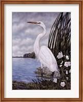 Great White Egret Fine-Art Print