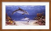 Dolphin World Fine-Art Print