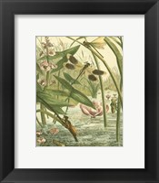 Dragonfly Gathering II Fine-Art Print