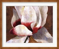 White Cyclamen Fine-Art Print