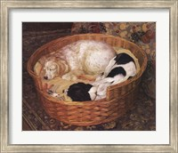 Sleeping Dogs Fine-Art Print