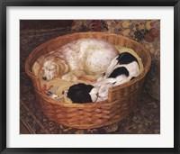 Sleeping Dogs Fine-Art Print