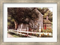 Daylilies Fine-Art Print