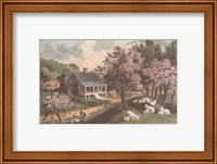 American Homestead Spring Fine-Art Print