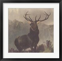 Monarch of the Glen Fine-Art Print