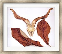 Ram's Skull with Brown Leaves Fine-Art Print