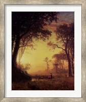 Light in the Forest Fine-Art Print