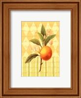 Botanical Orange Fine-Art Print