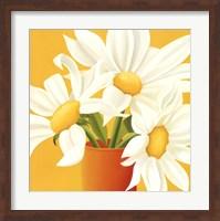 Sunny Daisies Fine-Art Print
