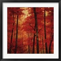 Vermilion Wood Fine-Art Print