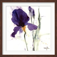 Iris I Fine-Art Print