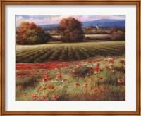 Fields of Provence II Fine-Art Print
