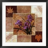 Lavender Iris Fine-Art Print