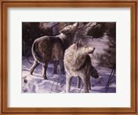 Winter Wolves Fine-Art Print