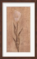 White Cala Lily Fine-Art Print