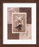 Cream Flower Fine-Art Print