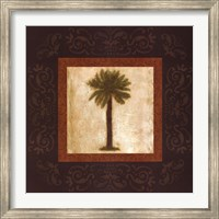Sago Palm Fine-Art Print