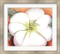 White Flower on Red Earth, No. 1 Fine-Art Print