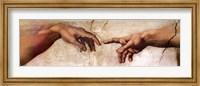 Creation of Adam (Detail) Fine-Art Print