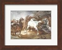 Fighting Horses Fine-Art Print