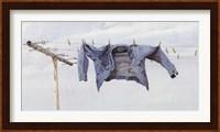 Cool Breeze Fine-Art Print