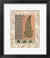 Green Fern Fine-Art Print