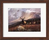 Bookcliffs Elk I I Fine-Art Print