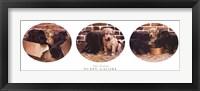 Puppy Galore Fine-Art Print