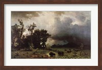 Buffalo Trail Fine-Art Print