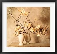 Magnolia Branches Fine-Art Print