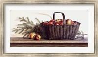 Winter Apples Fine-Art Print