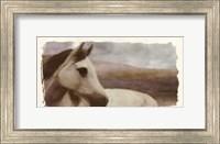 Horse On The Hill Fine-Art Print