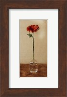 Orange Gerbera Fine-Art Print