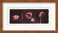 Illuminating Tulips I Fine-Art Print