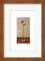 Pink Gerbera Fine-Art Print