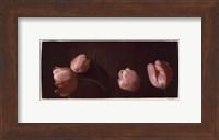 Illuminating Tulips II Fine-Art Print