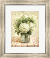 Cottage Hydrangeas in White Fine-Art Print