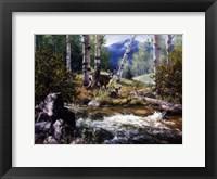 Rocky Mountain Deer Fine-Art Print