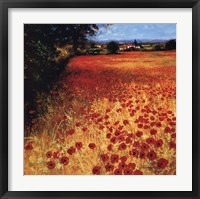 Field Of Red And Gold Fine-Art Print