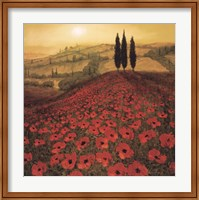 Poppy Field Fine-Art Print