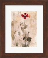 Sendree I Fine-Art Print