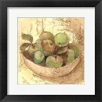 Sunlit Apples Fine-Art Print