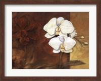 Luisia I Fine-Art Print