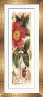 Rosa Gallica Fine-Art Print