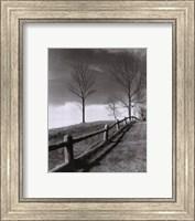 Fences And Trees, Empire, Michigan Fine-Art Print